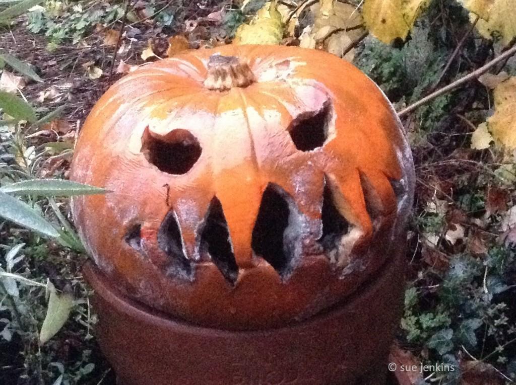 sj_pumpkin1